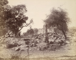 General view of ruins and standing pillar at Chandravati 10031734
